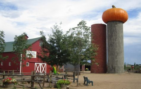 Enjoy a Good Time at a Corn Maze or Haunted Attraction