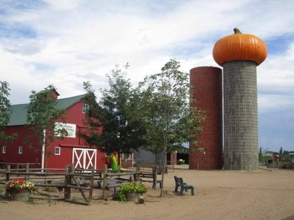 Anderson Farm's Seasonal Pumpkin