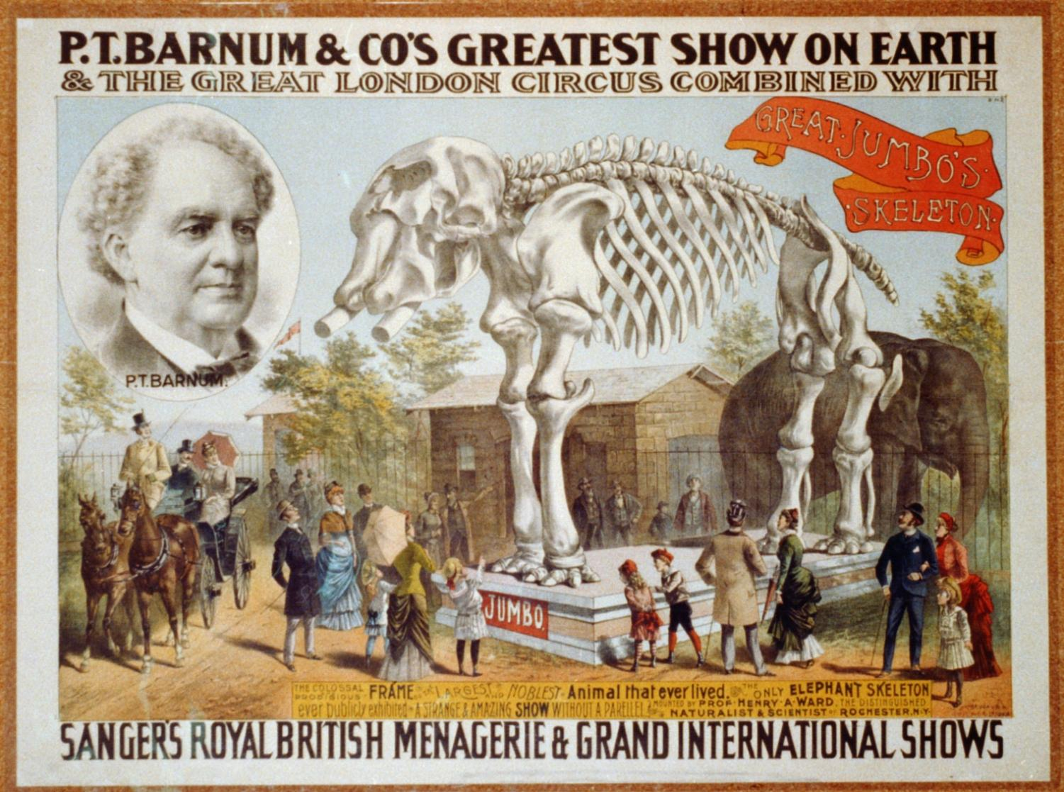 Ad for P.T. Barnum's circus (provided through Wikipedia)