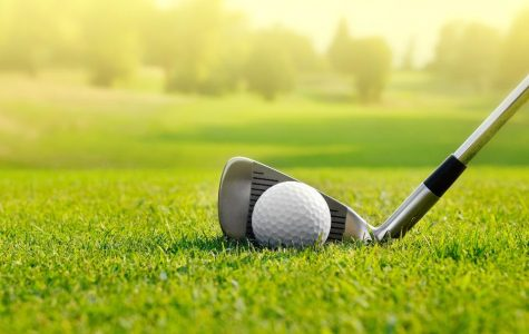 Cafarelli Qualifies for State Golf